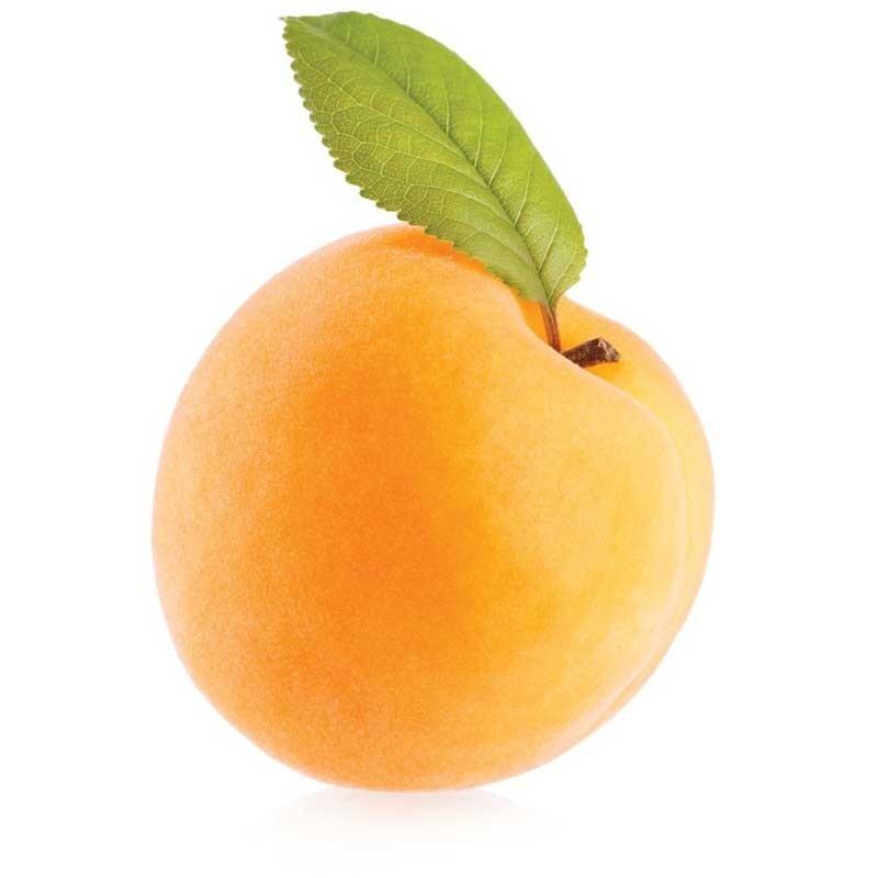 Apricot flavour concentrate FW - Flavor West