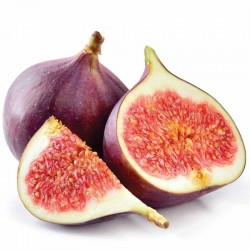 Fig flavour concentrate FW - Flavor West