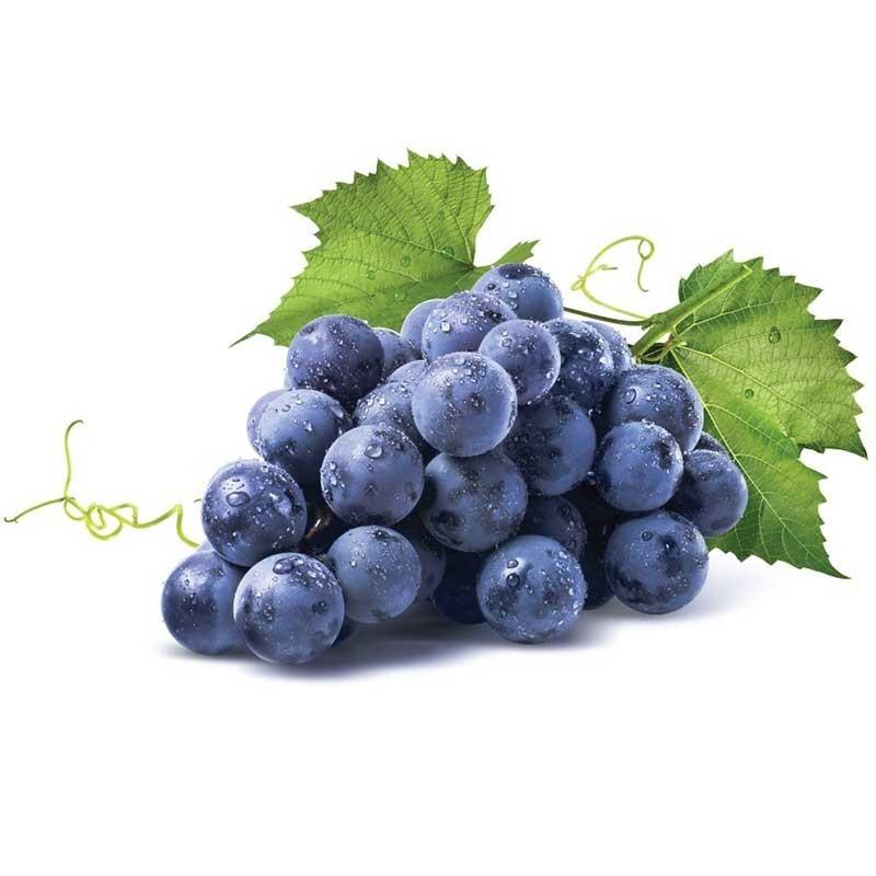 Grape flavour concentrate FW - Flavor West
