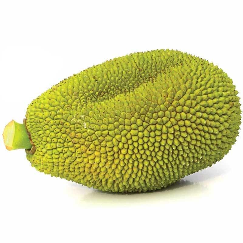 Jack Fruit flavour concentrate FW - Flavor West