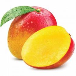 Mango flavour concentrate FW - Flavor West