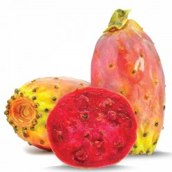 Prickly Pear flavour concentrate FW - Flavor West