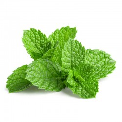 Mint flavour concentrate - Inawera
