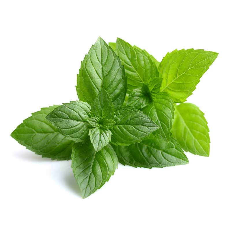 Peppermint flavour concentrate - Inawera