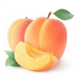 Apricot flavour concentrate - Capella