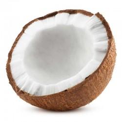 Coconut flavour concentrate - Capella