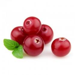 Cranberry flavour concentrate - Capella