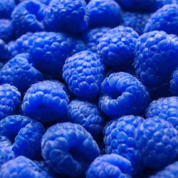 Blue Raspberry concentrate TFA - The Flavor Apprentice
