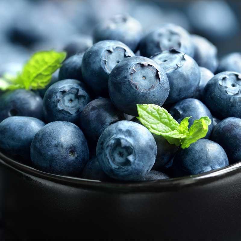 Blueberry Wild concentrate TFA - The Flavor Apprentice