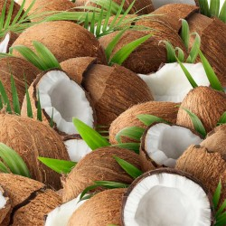Coconut concentrate TFA - The Flavor Apprentice