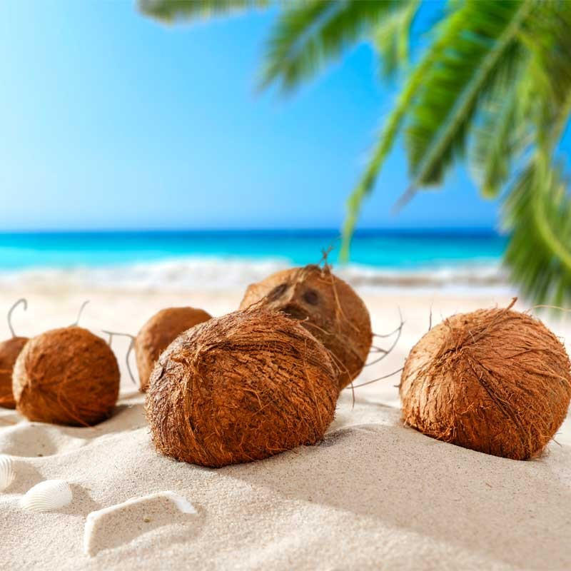 Coconut DX concentrate TFA - The Flavor Apprentice