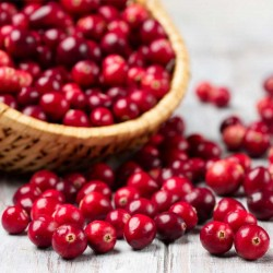Cranberry concentrate TFA - The Flavor Apprentice