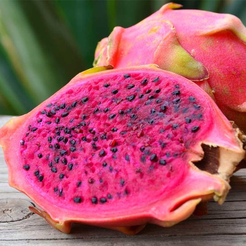 Dragonfruit concentrate TFA - The Flavor Apprentice