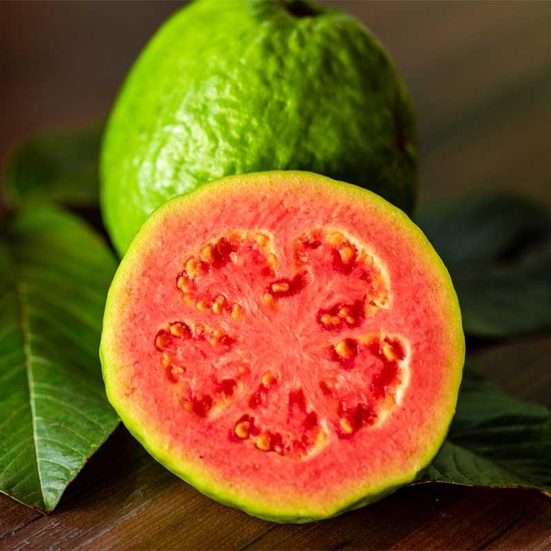 Guava concentrate TFA - The Flavor Apprentice