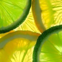 Lemon Lime v2 concentrate TFA - The Flavor Apprentice