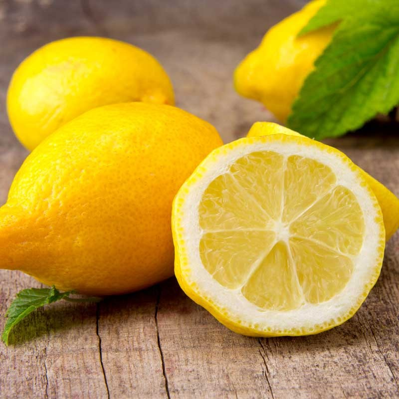 Lemon v2 concentrate TFA - The Flavor Apprentice