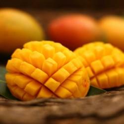 Mango concentrate TFA - The Flavor Apprentice