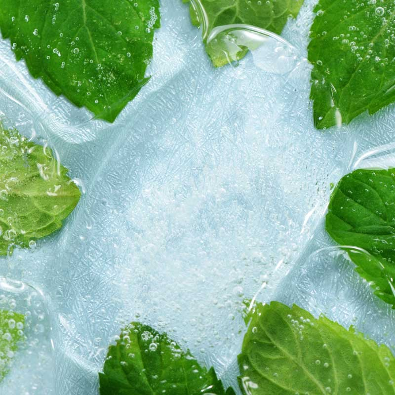 Menthol Liquid concentrate TFA - The Flavor Apprentice