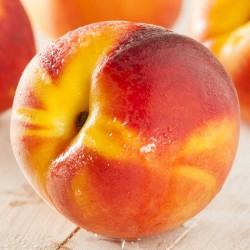 Peach Juicy DX concentrate TFA - The Flavor Apprentice