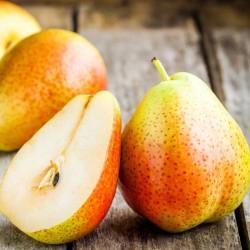 Pear concentrate TFA - The Flavor Apprentice