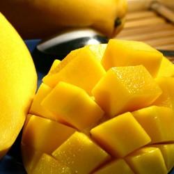 Philippine Mango concentrate TFA - The Flavor Apprentice